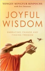 Buddhist book reviews: Joyful Wisdom by Mingyur Rinpoche